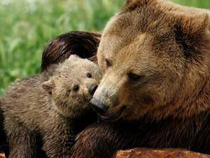 μαμά και παιδί